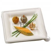 Sugar Cane Square Plate - 6.3 X 6.3 - 500/CS
