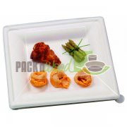 LID FOR Sugar Cane Square Plate - 10.2 X 10.2 - 250/CS
