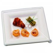 Sugar Cane Square Plate - 10.2 X 10.2 - 250/CS
